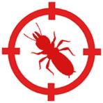 termitas girona